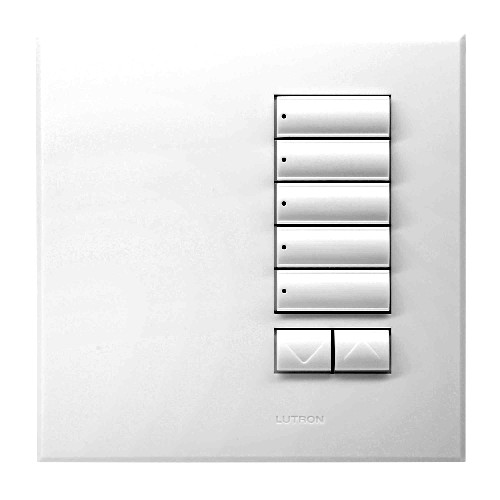 Lutron wall switch